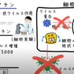 イベルメクチンの効果と有効性